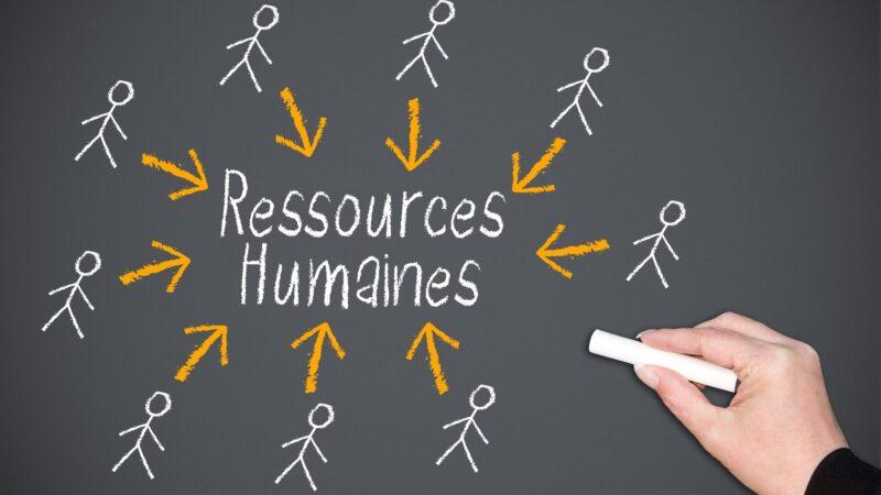 Formation pratique en management  des ressources humaines